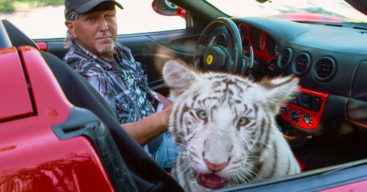 joe exotic è sulla sua ferrari e sul sedile del passeggero c'è una tigre bianca - nerdface