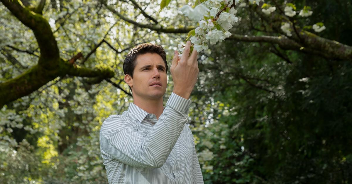 il protagonista tocca con attenzione un ramo fiorito di un albero - nerdface