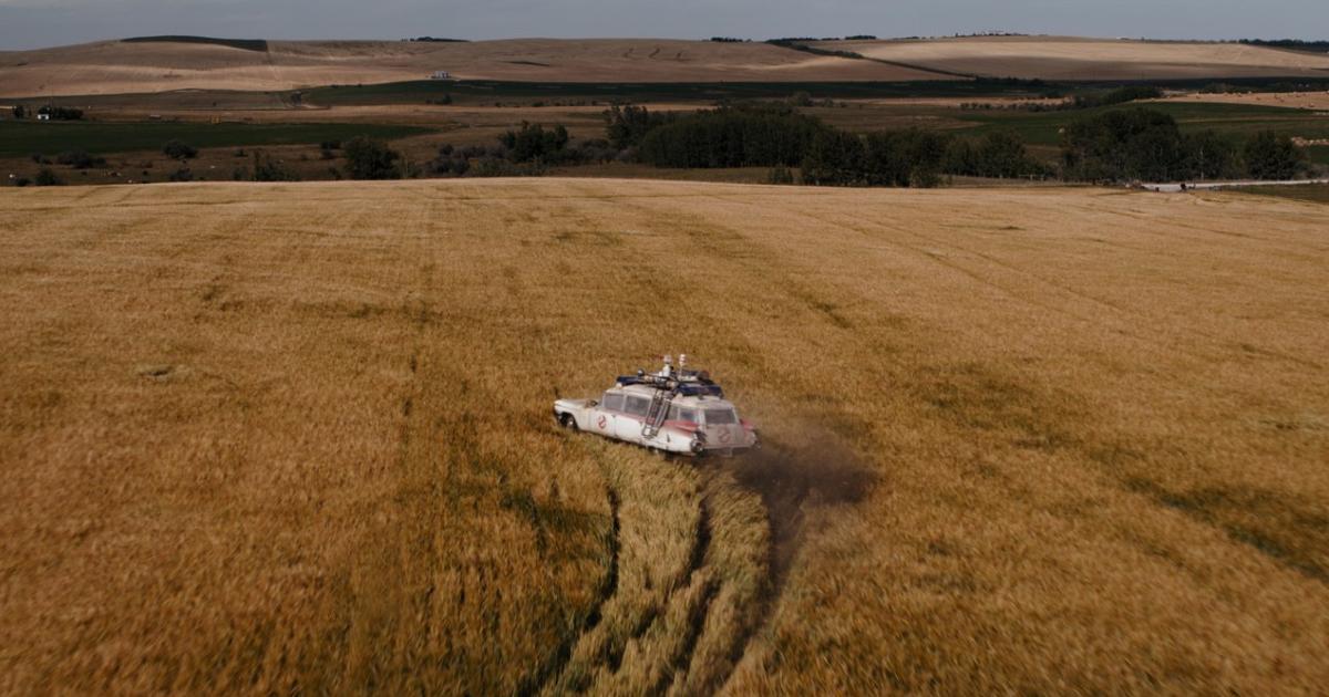 la ekto 1 sfreccia dentro un campo di grano - nerdface
