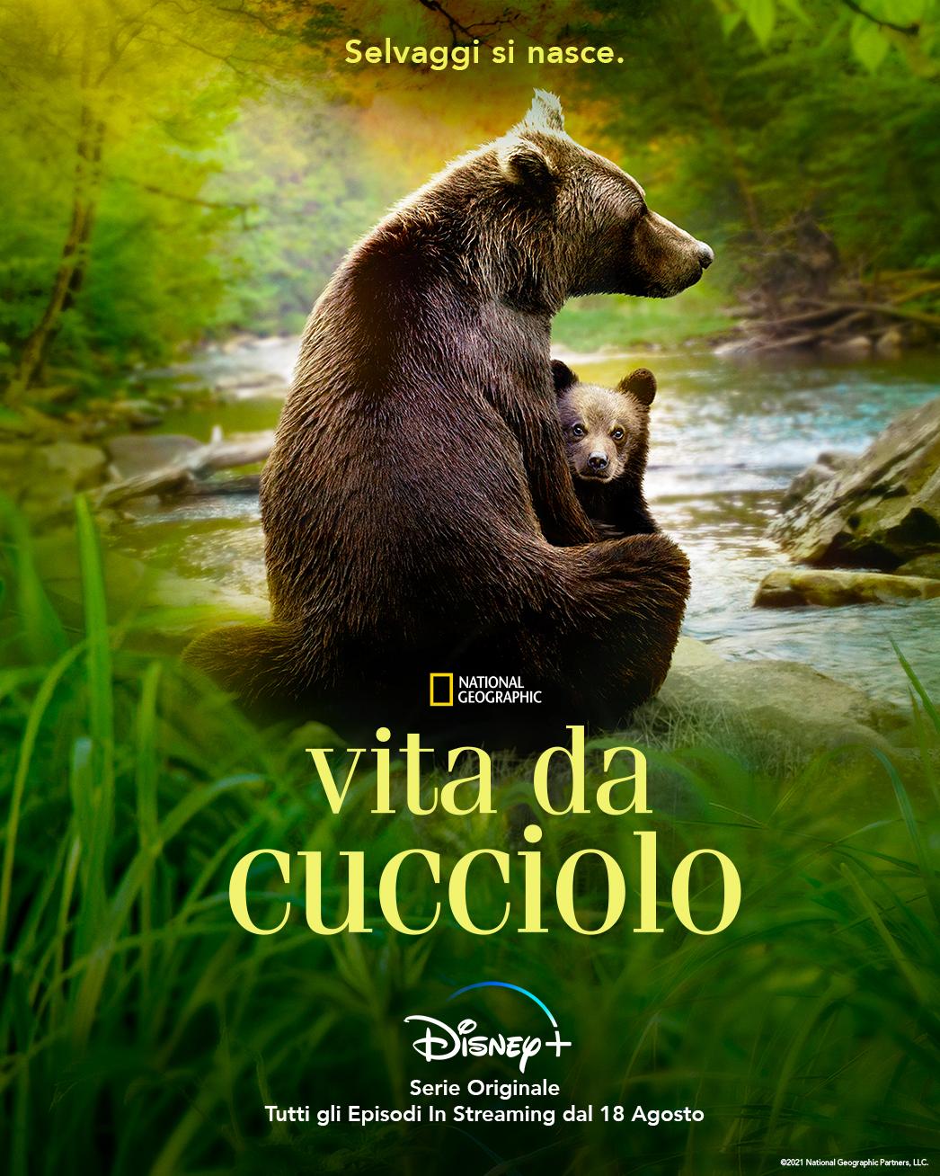 la key art ufficiale di vita da cucciolo riporta una mamma orsa di spalle, seduta, con in braccio il suo cucciolo - nerdface