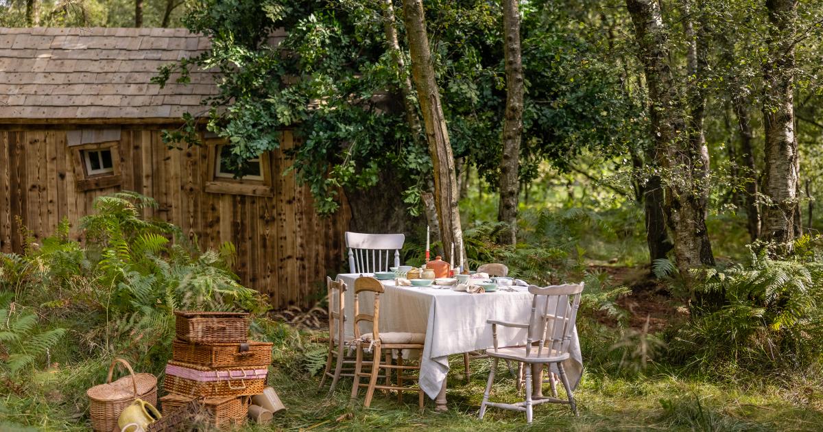un tavolino apparecchiato per la colazione nel bosco - nerdface