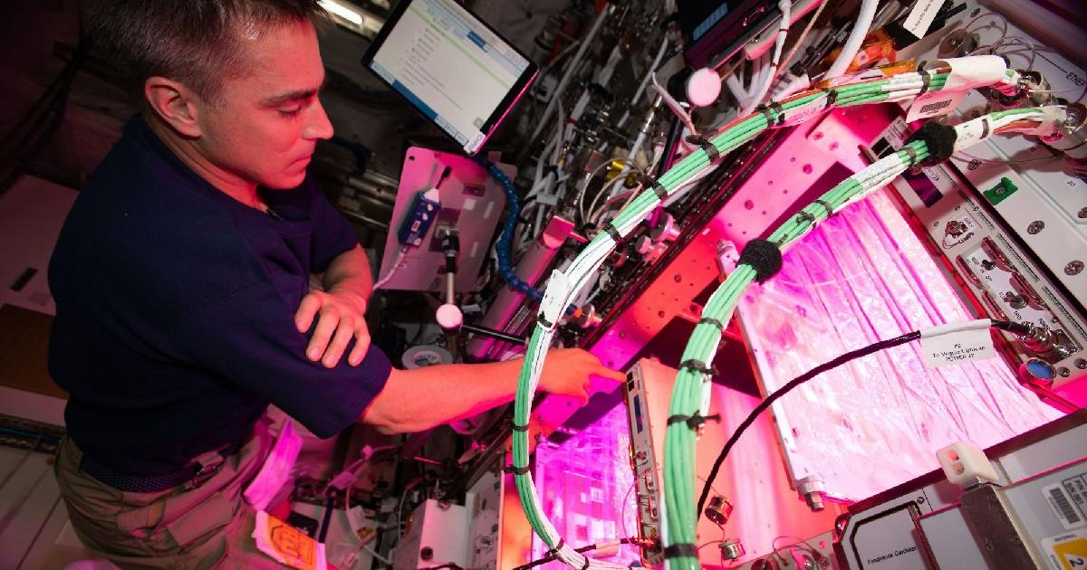 Un astronauta con le sue attrezzature - nerdface